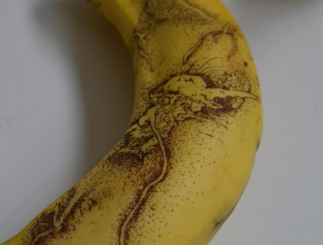 水墨画家・雪村の作品をモデルに描かれた竜