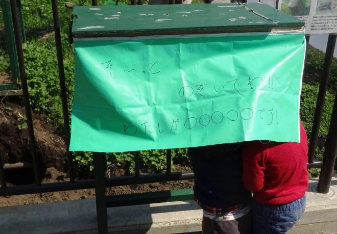 ハリネズミが飼育されている箱。緑色のシートがかけられていて「そ~っとのぞいてね!! わたしが○○○○○です!」と書かれている