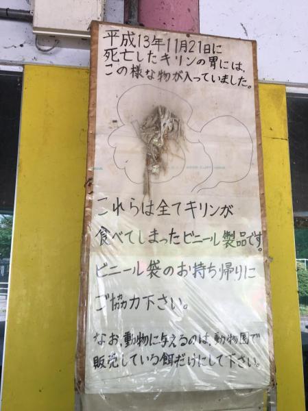 宇都宮動物園の休憩所にある看板。ビニールを食べたキリンが死んだことを、実際に胃の中から出てきたビニールとともに伝えている