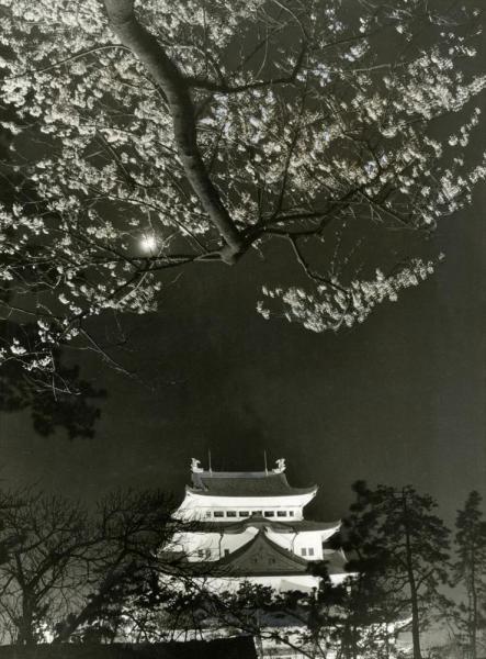 夜桜のライトアップに浮かび上がる名古屋城天守閣。1945年5月の空襲で焼失したが、1959年に再建された=1966年3月26日撮影