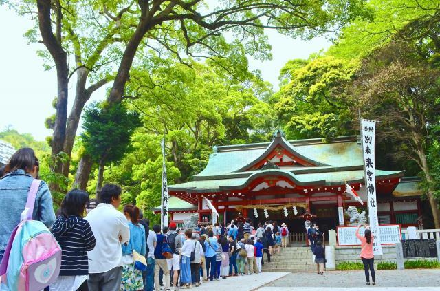 「パワースポット」のブームで参拝客が増えた静岡県熱海市の来宮神社。本殿奥に樹齢2千年超といわれる大楠がある