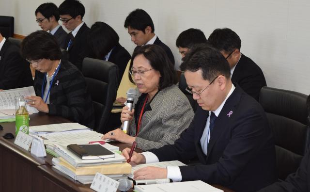 内閣府男女共同参画会議の専門調査会の模様