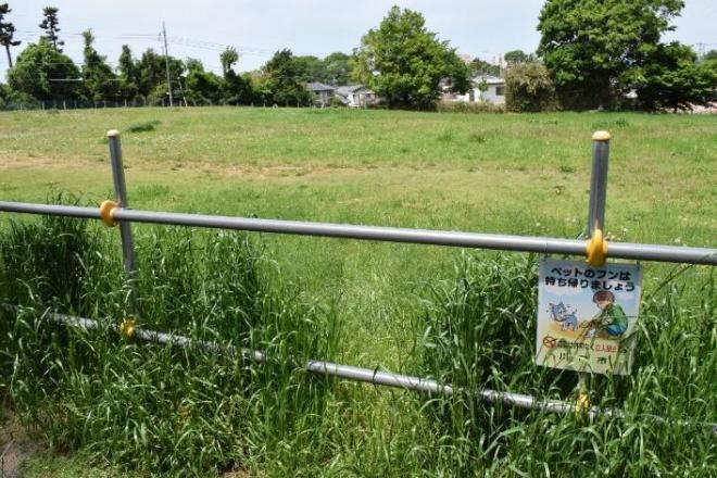 埼玉県川口市にある15億円以上の価値があることになっている空き地