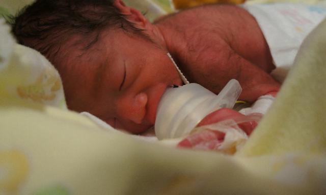 息子のきーちゃん。生後0日目の写真