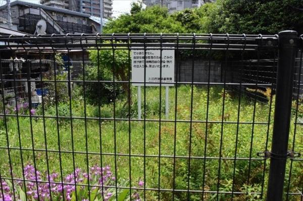 埼玉県川口市にある土地開発公社が購入した空き地。土地までの道が細くて、建築基準法上そもそも建物がつくれないという