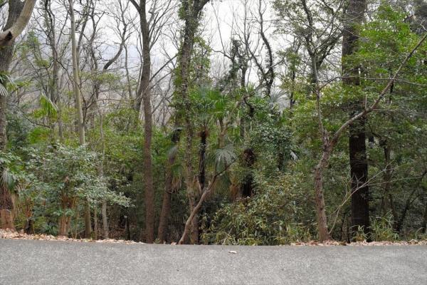 三セク債を使わぬ選択をした自治体も。この急斜面の先に「塩漬け土地」が広がる=香川県多度津町、赤井陽介撮影