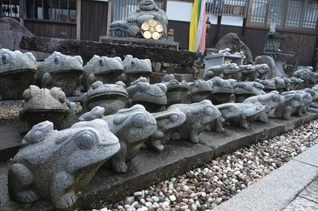 たくさんのカエル=福井県越前市