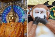 ミャンマーの電飾された仏像(左、pixta)と日光東照宮の「言わざる」