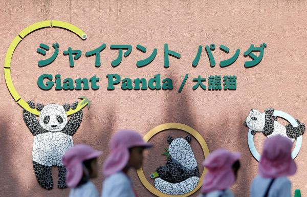 上野動物園のパンダの前を通る幼稚園児たち=上野・東京、2017年5月