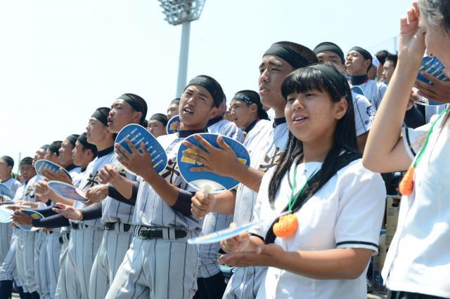 昨年の大阪大会決勝、金光大阪の応援団=舞洲