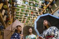 川越氷川神社で開催中の「縁むすび風鈴」の様子=埼玉県川越市、佐藤正人撮影