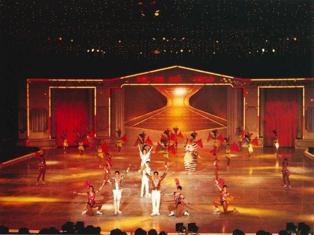 1990年のプリンスアイスワールド