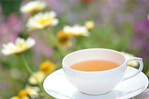 平和、希望の花言葉を持つヒナギク(デージー)と紅茶のカップ。ダージリンにて撮影。