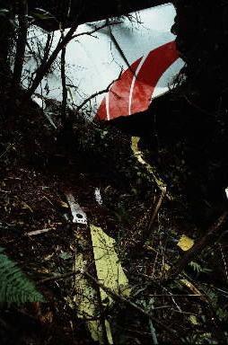 墜落した尾根の手前の尾根に、尾部をひっかけた際に落ちたとみられる垂直尾翼の一部があった