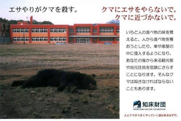 クマへのエサやり防止のために配布されているポストカード