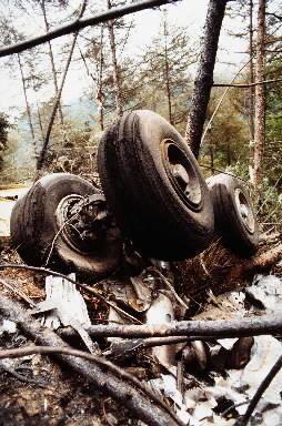 ランディング・ギア(車輪)は、南斜面の一番焼けただれた一帯にあった