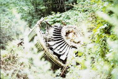 日航ジャンボ機が群馬県上野村の御巣鷹山に墜落し、乗客・乗員あわせて520人が死亡、奇跡的に4人が助かった。エンジン、タービンが曲がり、草木がからみついていた=1985年