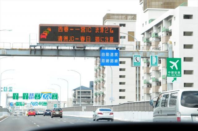 名古屋高速の道路上に表示された「猫に注意」