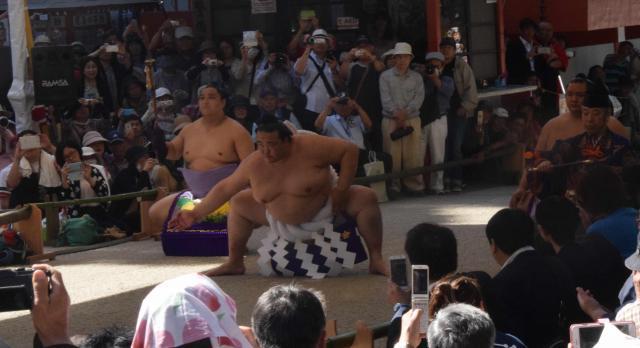 土俵入りを披露する稀勢の里=鹿嶋市の鹿島神宮、2017年6月4日