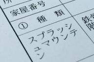 スプラッシュ・マウンテンの登記事項証明書。ばっちり「スプラッシュマウンテン」の文字が。