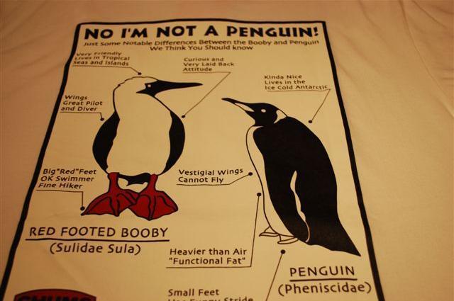 「NO I'M NOT A PENGUIN!(ペンギンじゃないよ)」などと書かれたTシャツ