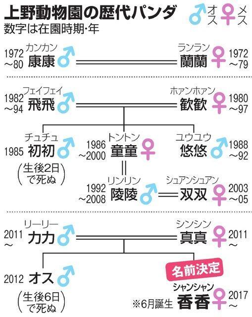 上野動物園の歴代パンダの表