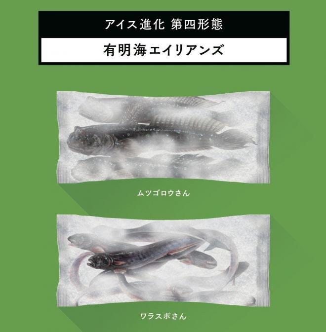 有明海のムツゴロウのパッケージも検討したそうです