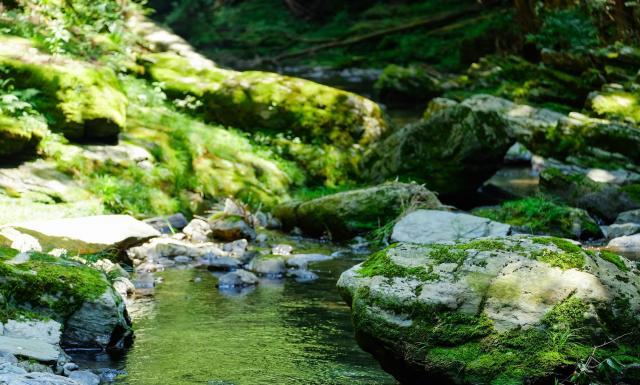「渓流の水のせせらぎ」を「音姫」の音に採用したそうです(写真はイメージです)