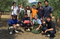 小豆島の井上誠耕園で働く方々。オリーブの生育から製品作り、販売まで行っている