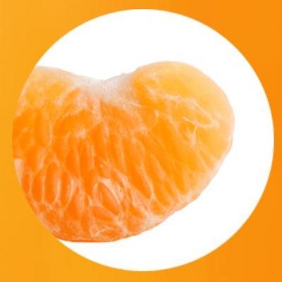 みかんの果肉を包む薄皮の部分が「瓤嚢」です