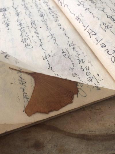古書に挟まっていたイチョウの葉