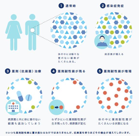 薬剤耐性ができるまでを分かりやすく説明したグラフィック。抗菌薬を使えば使うほど、耐性菌がうまれる機会が増えてしまう