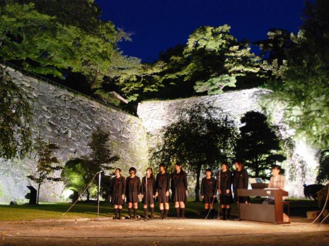 ライトアップされた盛岡城跡公園の石垣=盛岡市内丸