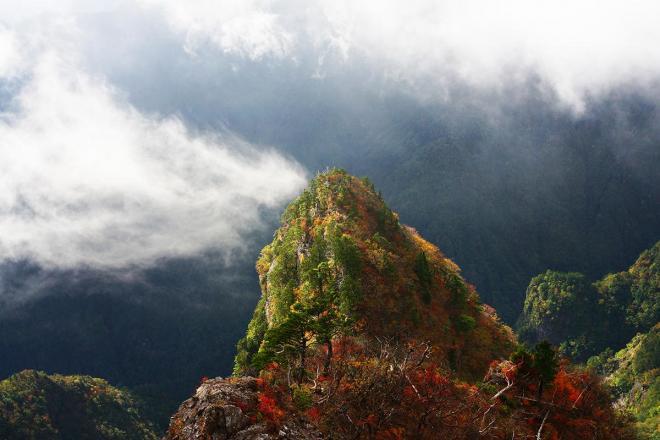 高さ800メートルの断崖絶壁に突き出た天然の展望台「大蛇嵓(だいじゃぐら)」。雄大な山々を一望でき、まるで大蛇の背中に乗っているかのようなスリルも味わうことができる=奈良県上北山村の大台ケ原、2017年10月