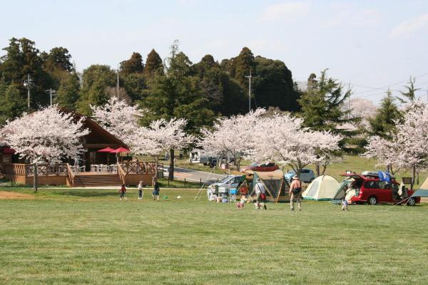 こちらは併設されているキャンプ場