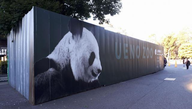 上野動物園の入り口近くにある看板。どことなくスタイリッシュなパンダがお出迎え
