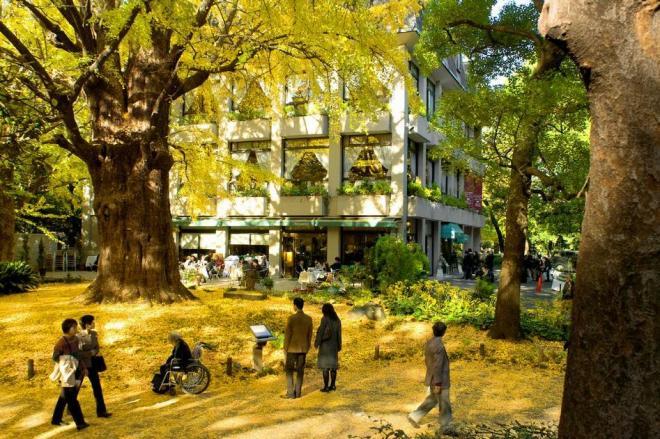 松本楼のテラス前=東京都千代田区の日比谷公園=2008年11月23日