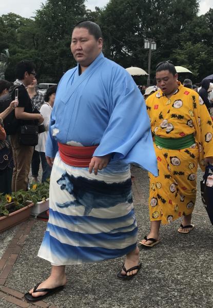 逸ノ城関はオオカミ。モンゴルの力士の着物柄によく見られます=2017年名古屋場所、愛知県体育館