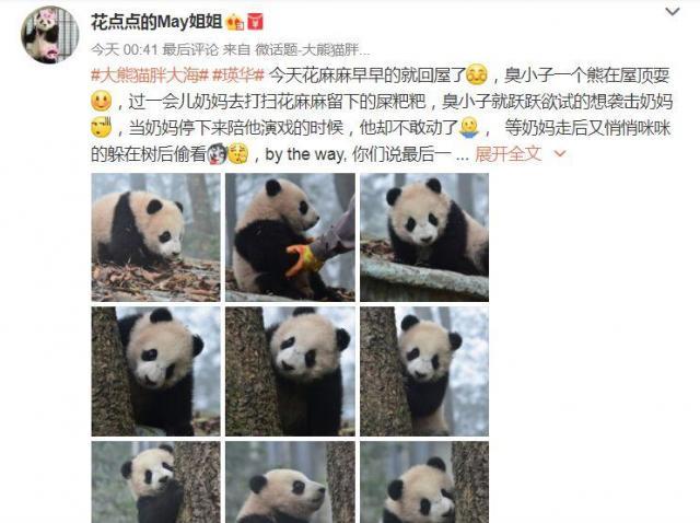 中国版ツイッター「微博」上の#胖大海#の関連写真