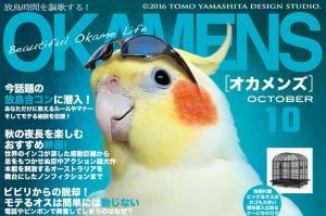 「日本を鳥戻す!」 キレッキレなインコポスター、作者に聞きました