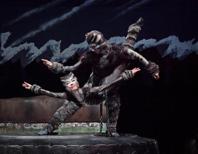 劇中には、こんなアクロバティックな動きも。劇団四季「キャッツ」大阪公演より=遠藤真梨撮影