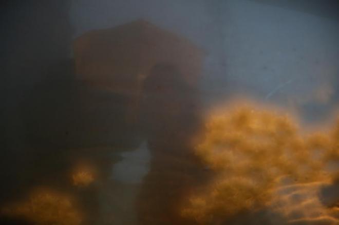 ガラス越しに水盤に浮かんだ献花が見えました=1月17日午前7時、神戸市中央区、細川卓撮影