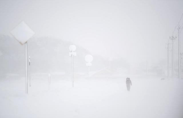 吹き上げた雪で一面真っ白の「ホワイトアウト」状態になった道路=2月7日午前9時18分、福井県あわら市、加藤諒撮影