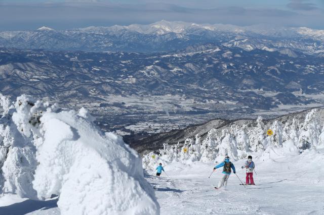 樹氷を楽しみながら滑れる蔵王温泉のスキー場=2018年1月20日、山形市、林敏行撮影
