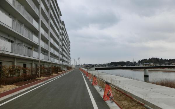 【5】2018年2月24日、震災直後に撮影された大川の桜並木は区画整理などで今はない=気仙沼市の気仙沼大橋付近