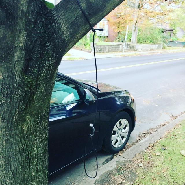 2017年10月、米東部ピッツバーグの住宅街のアフリカ系米国人カップルの自宅前で見つかった縛り首の縄。USBケーブルを街路樹にくくりつけている