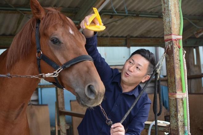 管理馬の世話をする笹野博司調教師=岐阜県の笠松競馬場厩舎
