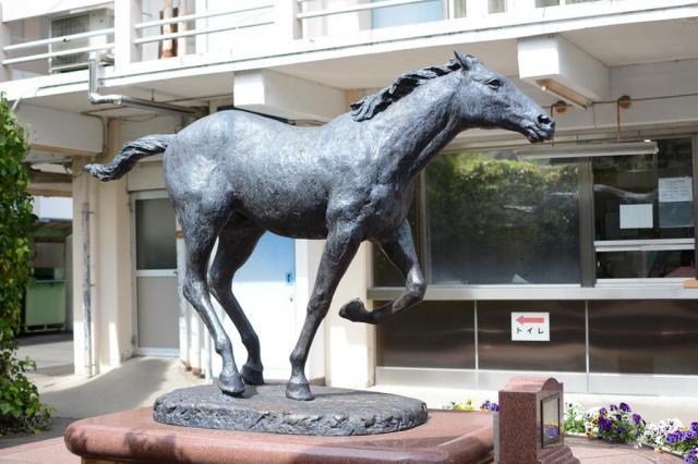 笠松競馬出身のオグリキャップは中央競馬でスターホースになった=岐阜県の笠松競馬場