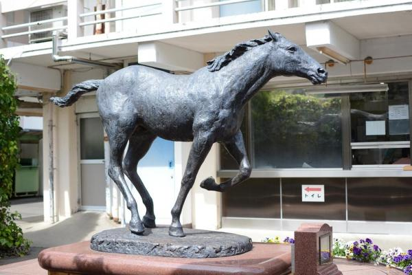 笠松競馬出身のオグリキャップは中央競馬でスターホースになった=笠松競馬場