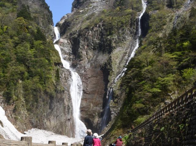 称名滝(左)と、雪解け水が流れ込むこの季節にだけ見られるハンノキ滝=2018年5月11日、富山県立山町芦峅寺